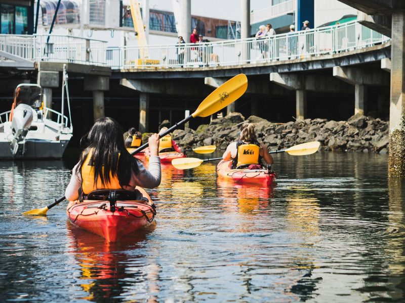 Kayakers exploring Seattle seawall